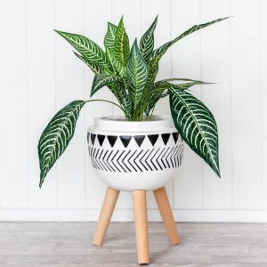 Geometric Planter Monochrome