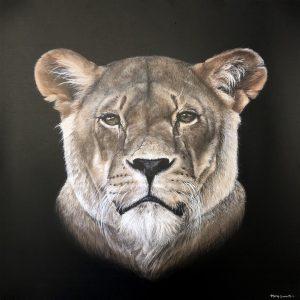 Mary Zammit Lioness Print 1