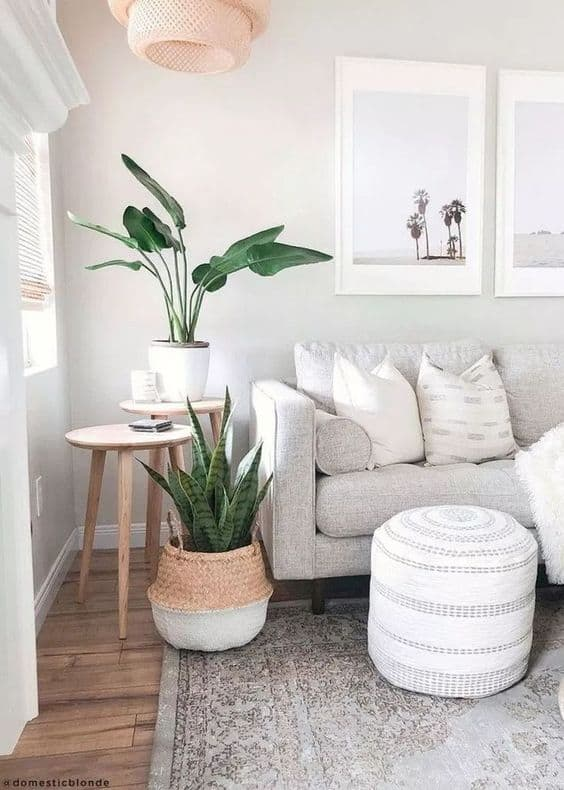 Coastal Decor featuring light neutral palette, plants, natural materials and light wood furniture