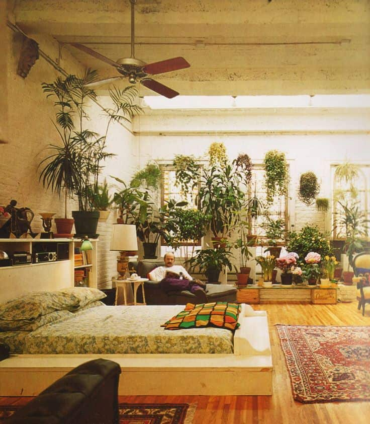 Many indoor plants feature in 1970s home