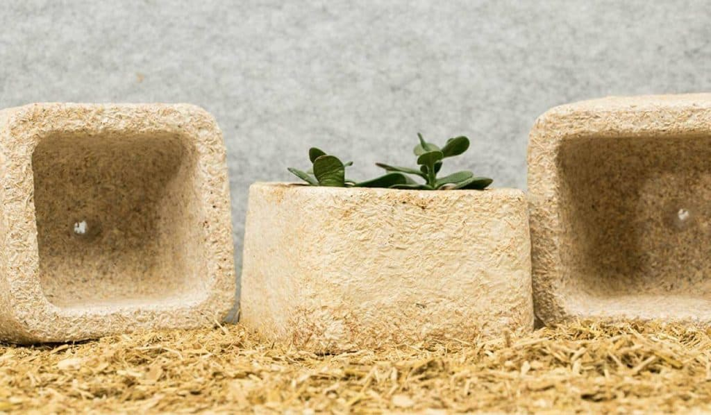 MycoComposite packaging made from mushrooms. An alternative to plastic packaging.